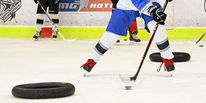 Hockey school for amateurs of Marian Gaborik - description